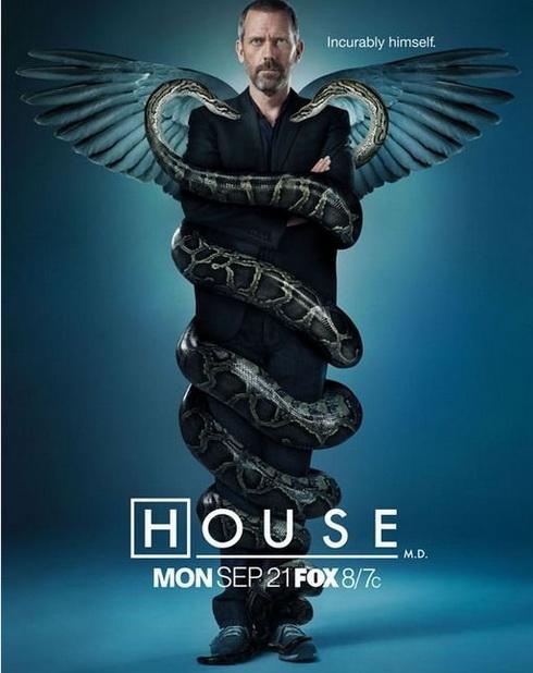 Хью Лори в главной роли сериала Доктор Хаус (House MD)